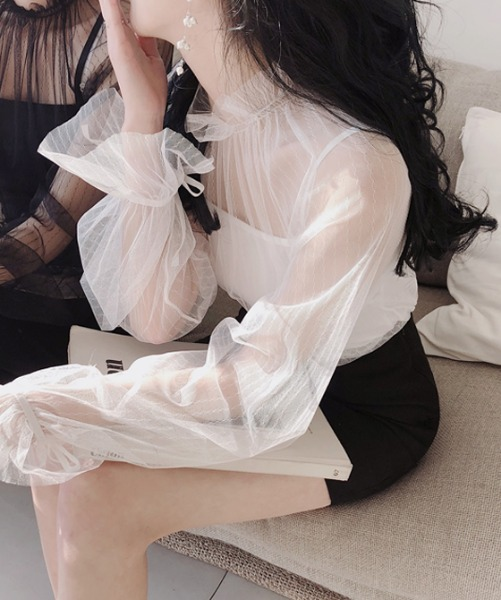 Sheer Blouse and Camisole Set
